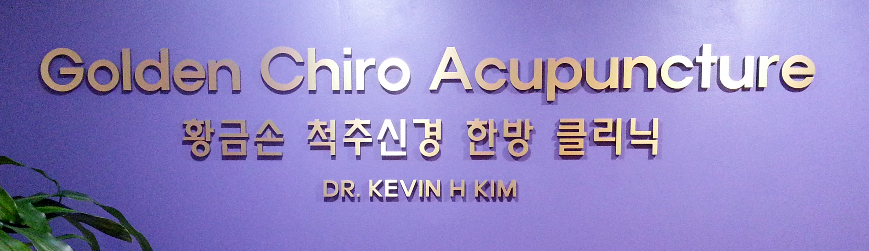 Chiropractic and Acupuncture Sign